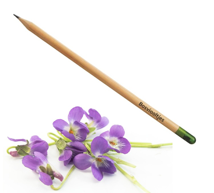 Pencil with violet seeds